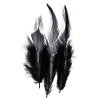 Saddle Hackles Black